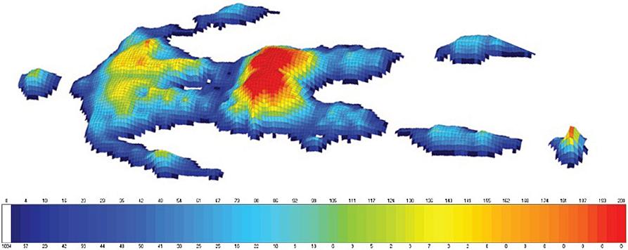 Тепловая карта давления тела